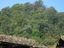 Elang Nest Village: lebar kota Wenshan County of Eagle Nest Village Zhulin